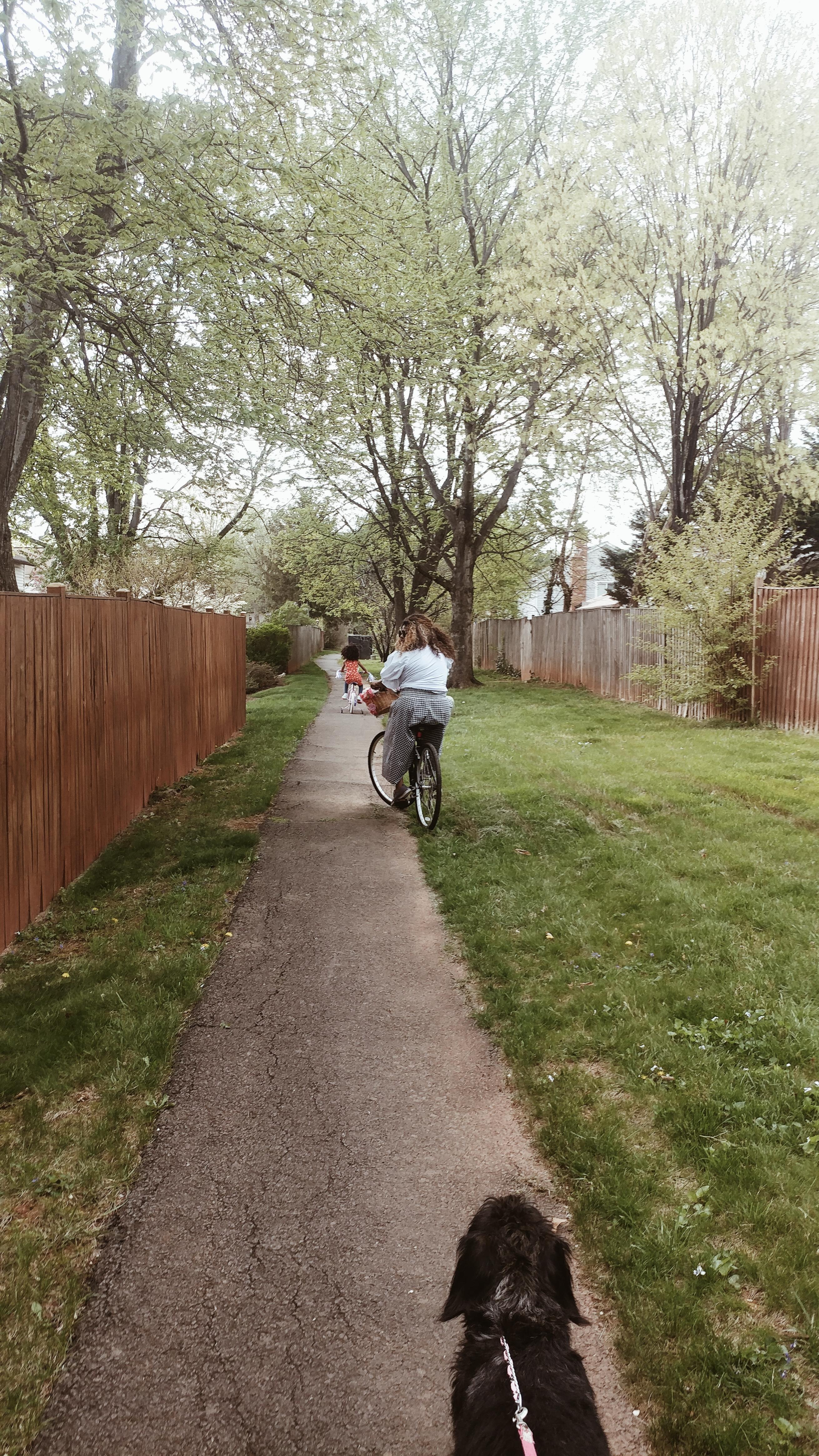 Always Creating Blog // Spring Bike Ride