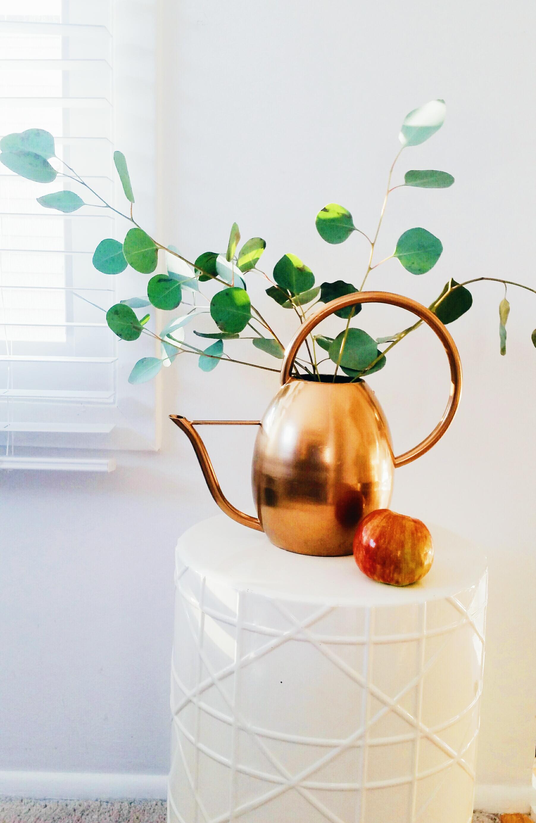 DIY Metallic Gold Indoor Watering Can